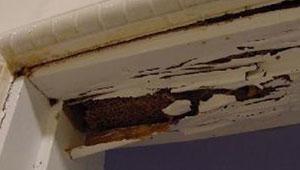 Termite Damaged Doorframe